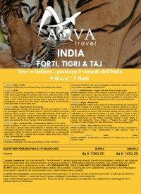 INDIA - FORTI, TIGRI & TAJ Tour in italiano - partenze il venerdì dall'Italia 9 Giorni / 7 Notti